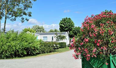 Alley of the campsite in Vendée with its mobile home rentals in Saint-Hilaire