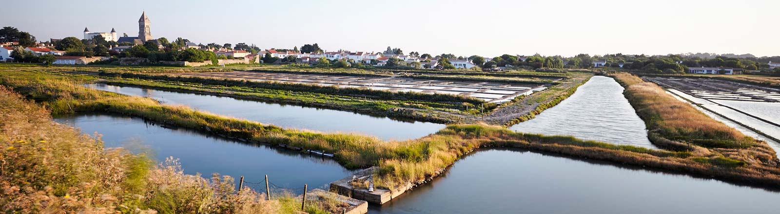The Noirmoutier salt marshes during your camping stay in Vendée